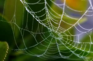 文脈力・知識力を鍛えて網を張る