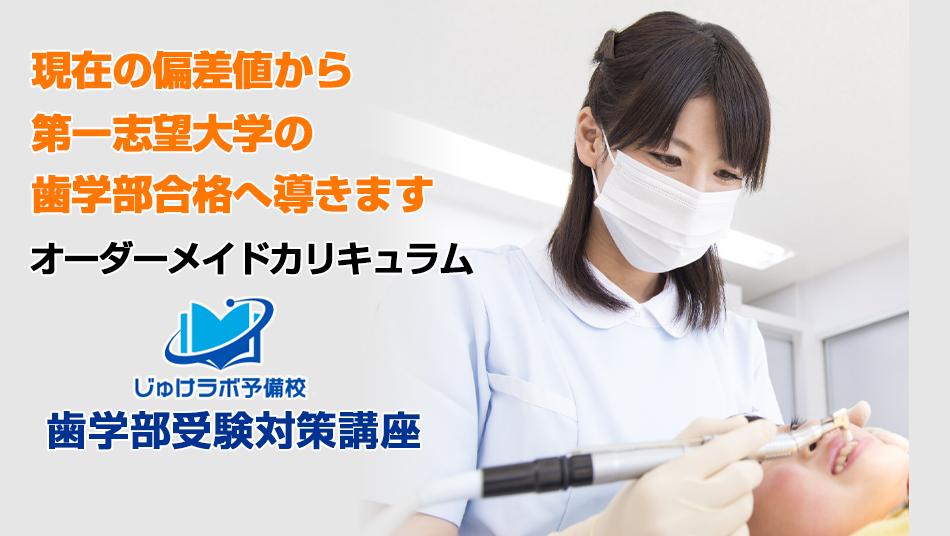 歯学部受験策講座