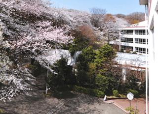 日本女子大学附属高校校舎